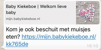 Baby Kiekeboe link delen